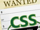 wanted css